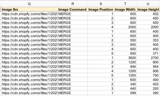 Shopify Export Image Dimensions