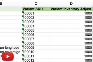 Adjust Shopify Inventory Quantity