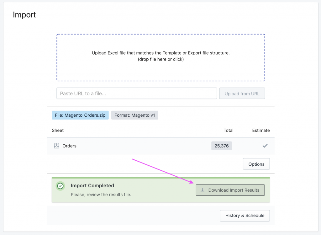 Download import results file after dry run of Shopify Orders import from Magento