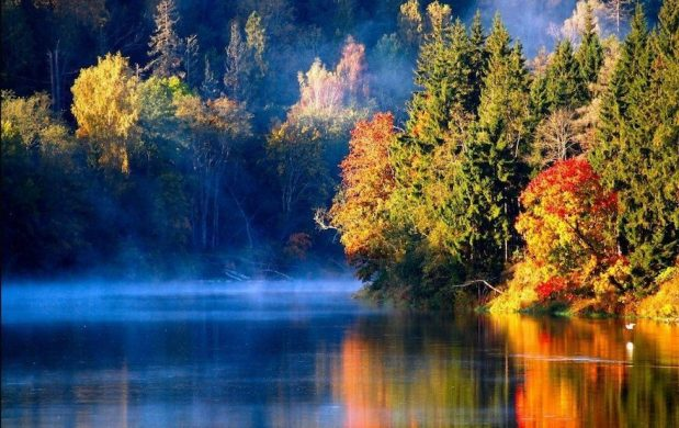 Excelify Autumn in Latvia